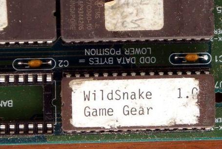 wild snake prototipo